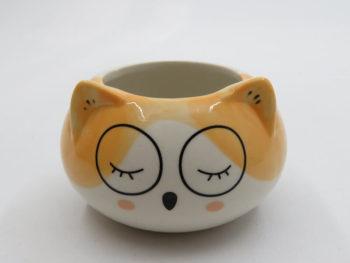 macetero gatito con lentes